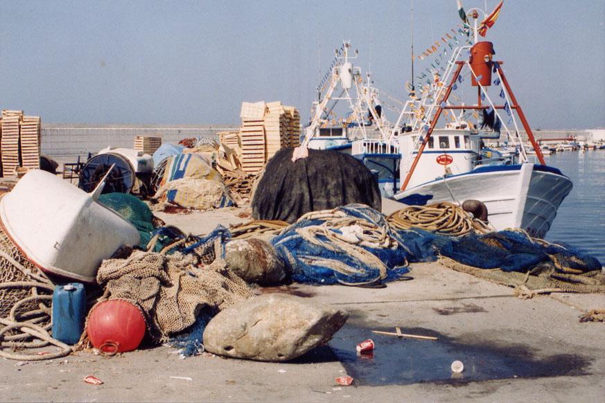 Pesca de pelágicos
